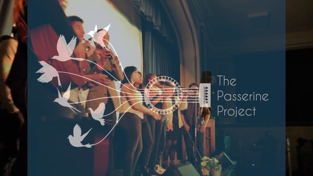 Save the Date: 11/6 BCS Students Perform with Passerine Project!