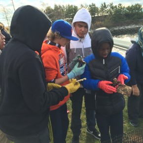 12/2 – 8th graders committed to the Billion Oyster Project!